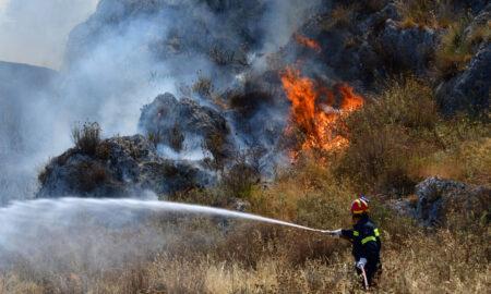 Φωτιά κοντά στο Πεταλίδι