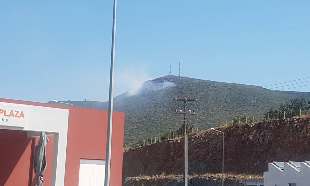 30 στρέμματα έκαψε η φωτιά στα Τσουκαλαίϊκα – Συνελήφθη εμπρηστής στους Χριστιάνους