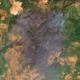 Χαρτογραφία καταστροφής: Τι άφησε πίσω της η φωτιά στην Ευβοια