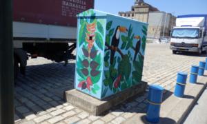 Eξωτικά πουλιά τουκάν στο Λιμάνι Καλαμάτας!