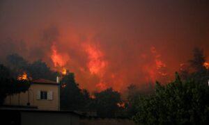 Σε πύρινο κλοιό η Εύβοια- Στα 11,5 χιλιόμετρα το μέτωπο της πυρκαγιάς!