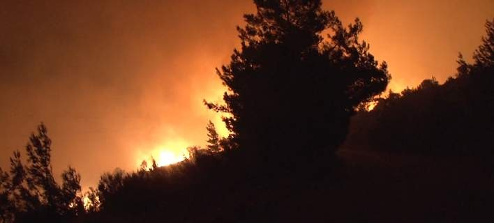 Πυροσβεστική: 56 δασικές πυρκαγιές το τελευταίο 24ωρο
