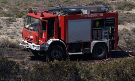 35 στρέμματα έκαψε η φωτιά στο Κόκκινο Μεσσήνης