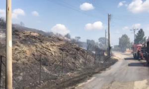 Φωτιά στο Λαγονήσι: Ανάμεσα στα σπίτια οι φλόγες – Εντολή εκκένωσης