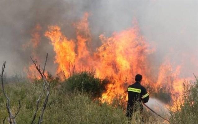 Σε εξέλιξη πύρινα μέτωπα – 68 πυρκαγιές σε 24 ώρες