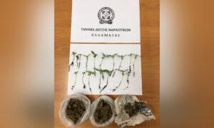 """Σύλληψη 60χρονου στον Άγιο Φλώρο-Ο αστυνομικός σκύλος """"ξετρύπωσε"""" το χασίς"""