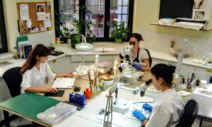 Εργαστήριο Συντήρησης Αρχαιοτήτων Μεσσηνίας: Ανοίγει τις πόρτες του στο κοινό για τρεις μέρες