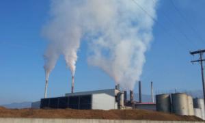Δήμος Οιχαλίας: Σύμφωνος με τα πρόστιμα στα πυρηνελαιουργεία-Να τηρηθεί η νομιμότητα