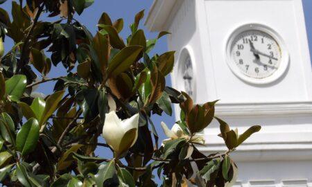 Λασκάρης: Ζητά αναβάθμιση του πάρκου της Μεσσήνης και δημιουργία Ψηφιακού Μουσείου για την Αρχαία Μεσσήνη