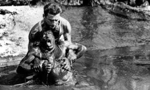 """Νέα Κινηματογραφική Λέσχη Καλαμάτας: """"Το μεροκάματο του τρόμου"""""""