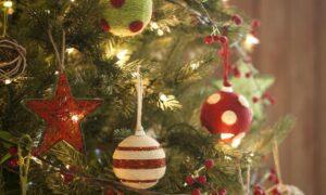 Δήμος Καλαμάτας: Διαγωνισμός για το καλύτερο χριστουγεννιάτικο δέντρο σε σχολείο!