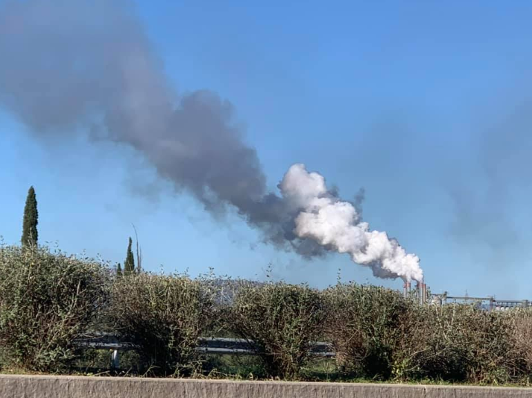 Νίκας: Τα πυρηνελαιουργεία Μεσσηνίας δεν θα λειτουργούν από 6 το πρωί έως 12-Mέσα στην εβδομάδα η απόφαση
