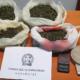 Σύλληψη 63χρονου με χασίς στο σπίτι του στην Καλαμάτα