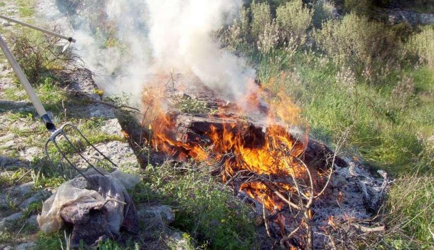 4 πυρκαγιές το τελευταίο τριήμερο στη Μεσσηνία- 50 στρέμματα καμμένα από το κάψιμο κλαδιών